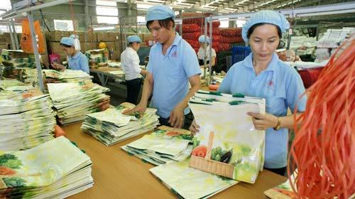 VN cấm sản xuất túi nilon khó phân hủy