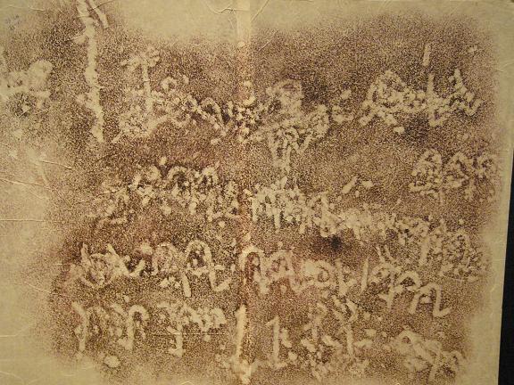 Lịch sử phát triển của bao bì carton